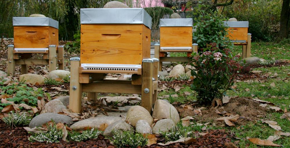 mettre une ruche dans son jardin interesting de nombreux et entreprises franaises choisissent. Black Bedroom Furniture Sets. Home Design Ideas